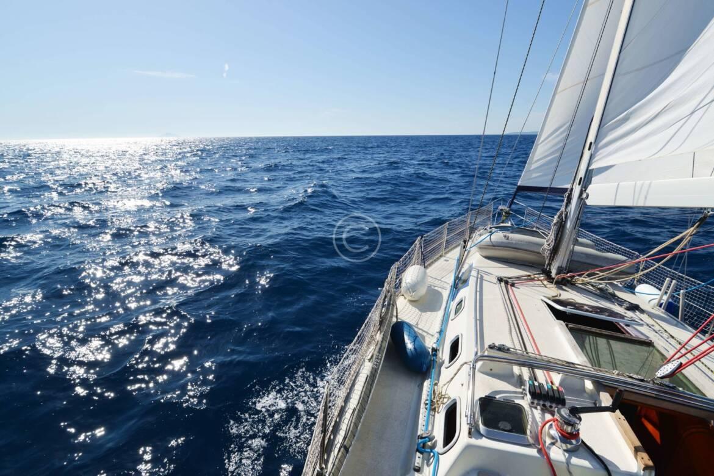 boat-rentals-scaled.jpg